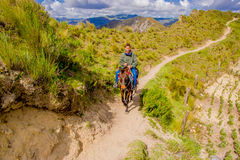 QUITO, ECUADOR - NOVEMBER, 25 2016: Nicht identifizierter junger Tourist, der ein Pferd-trought ein sandiger Weg nahe Quilotoa re Lizenzfreie Stockbilder