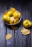 Quitte ist Herbstfrüchte Stockbild