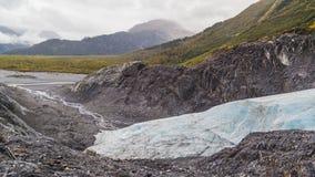 Quittez le glacier images stock