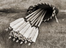 Quiver Royalty Free Stock Photo