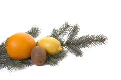 Quivi, laranja e limão. Fotografia de Stock Royalty Free