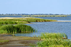 Quivira National Wildlife Refuge Royalty Free Stock Images