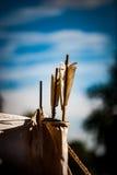 Quivver стрелок Стоковое Изображение