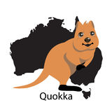 Quokka animall of Australia. Cute animal Royalty Free Stock Photos