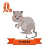 Quokka Q list Ślicznych dzieci zwierzęcy abecadło w wektorze śmieszny Zdjęcia Royalty Free