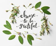 Quote  `Choose to be grateful` written on paper with leaves and flowers on white background. Top view. Quote `Choose to be grateful` written on paper with leaves Stock Image