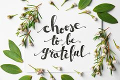 Quote `Choose to be grateful` written on paper with leaves and flowers on white background. Top view Royalty Free Stock Images