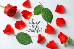 Quote `Choose to be grateful` written on paper with petals and leaves. On white background. Top view stock photo