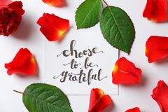 Quote  `Choose to be grateful` written on paper with petals and leaves on white background. Top view. Quote `Choose to be grateful` written on paper with petals Royalty Free Stock Photography