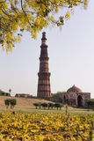 Qutub Minar and Alai Darwaza inside Qutb complex in Mehrauli. Delhi, India, Asia stock image