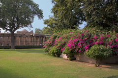 Qutub Minar complex grounds with flowers in Delhi, India Stock Photos