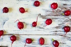 Rábano rojo en el bacground de madera blanco Visión superior imagenes de archivo