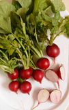 Rábano vegetal Foto de archivo