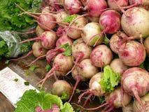 Rábanos del corazón de Rose en el mercado de los granjeros imagenes de archivo