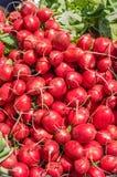 Rábanos rojos en la exhibición en el mercado Imagen de archivo