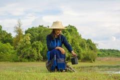 Rádio de transistor e estilo de vida tailandês do camponês fotografia de stock