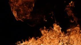 Ráfaga de fuego en negro almacen de metraje de vídeo