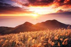Ráfaga de Sun en Tatun Mt Imagen de archivo