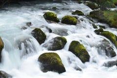 Rápidos de la cascada Imagen de archivo libre de regalías