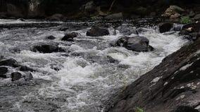 Rápidos de precipitación en el río de Yamaska en Granby, Quebec almacen de video
