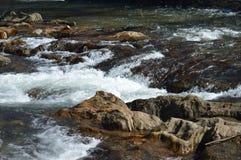 Rápidos del río Foto de archivo