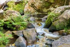 Rápidos hermosos del paisaje en un río de las montañas y un pequeño waterf foto de archivo