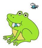 Râ que come a mosca gorda Foto de Stock