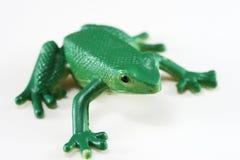 Râ verde Fotos de Stock