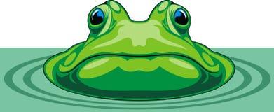 Râ verde ilustração stock