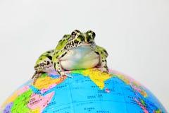 Râ verde e globo Foto de Stock Royalty Free