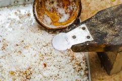 Râpe de noix de coco Photographie stock libre de droits