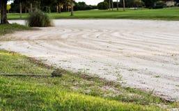 Râteau à côté de dessableur de terrain de golf Images stock