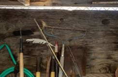 Râteau, tuyau, houe, pelle, et d'autres outils de yardwork et de jardinage se penchant sur le mur jeté photographie stock libre de droits
