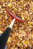 Râtelage d'Autumn Leafs POV Image libre de droits