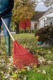 Râtelage des feuilles dans la chute photo stock