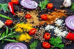 Różne pikantność, ziele, chili, czosnek i cebula na czarnym kamiennym tle typ, zdjęcia royalty free