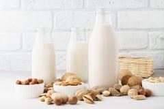 Różnorodny dokrętki mleko w butelkach i składnikach Weganinu dojny pojęcie zdjęcie stock
