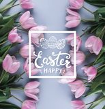 Różowi tulipany kwitną na błękitnym tle Odgórny widok Szczęśliwy Wielkanocnej karty tekst obraz stock