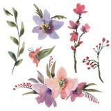 Różowy lato akwareli rocznik Ustawiający z Kolorowymi Wildflowers ilustracja wektor