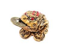 Rã de Feng Shui Um símbolo da sorte no bem estar financeiro Uma rã guarda uma moeda Fotografia de Stock