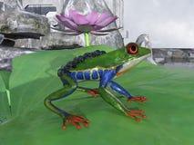 Rã do paraquedas Imagens de Stock Royalty Free