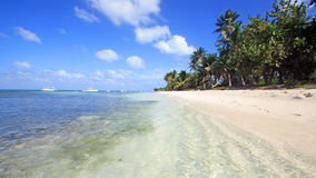 République Dominicaine - Bayahibe Royaltyfri Foto