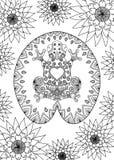 A rã tirada mão do zentangle que senta-se no projeto para a página adulta do livro para colorir, anti esforço da folha dos lótus, Fotografia de Stock Royalty Free