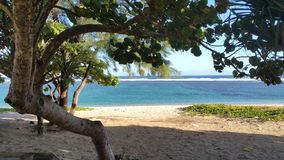 Réunion Insel Stockfotografie