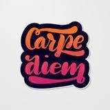 Ręcznie pisany literowanie typografia carpe diem ilustracji