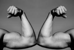 Ręka, mężczyzna ręka, pięści Mięśniowa ręka vs silna ręka Rywalizacja, siły porównanie VS Walka mocno jabłczana pojęcia zdrowie m zdjęcie stock