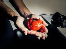 Ręki trzyma czerwonego pomidoru kształtowali kuchni i pomodoro zegar zdjęcia royalty free