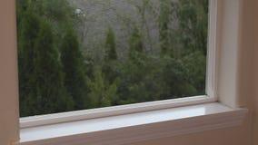 Räcka att damma av en fönsterfönsterbräda och fönsterspår med en torkduk för att förminska allergen för ett mer sund hem. arkivfilmer