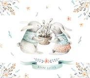 Räcka att dra kaniner för easter vattenfärgtecknad film med sidor, kli stock illustrationer