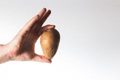 Räcka att rymma en potatis på en vit bakgrundsbonde, vegetarianH arkivbilder